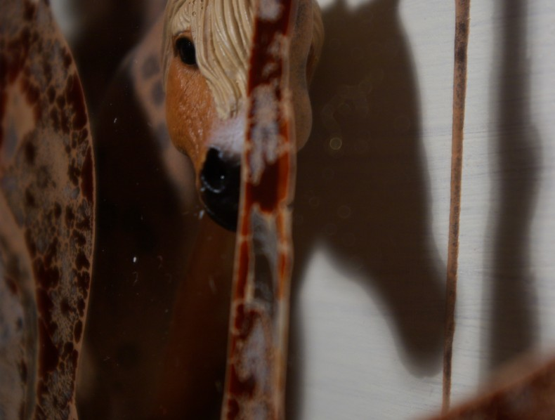Die Leiden des Pferdes